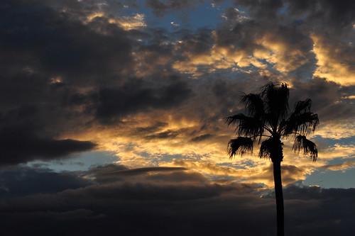 sunrise az greenvalley