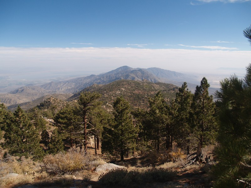 View southeast toward Rabbit and Villager Peaks, from just below the summit of Toro Peak.
