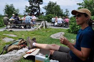 Mt Mitchell picnic