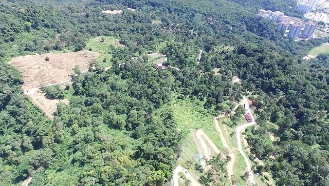 Bukit Relau/Botak Hill, Penang Nov-Dec 2015