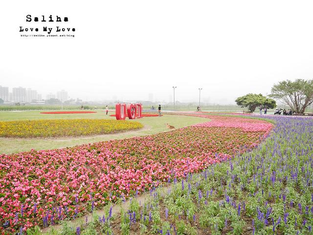 社子島溼地水鳥自行車道 (7)