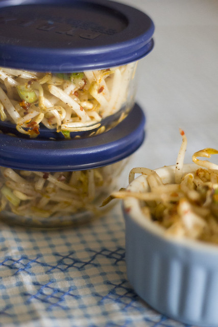 Spicy Bean Sprouts