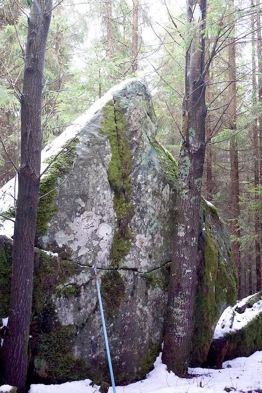 block Härskogen