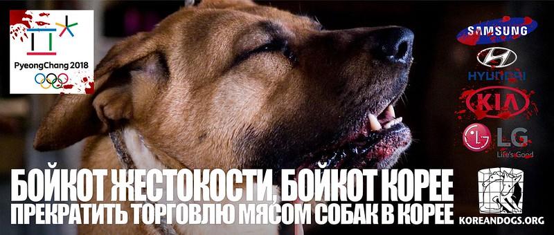 БОЙКОТ ЖЕСТОКОСТИ, БОЙКОТ КОРЕЕ (In Russian)