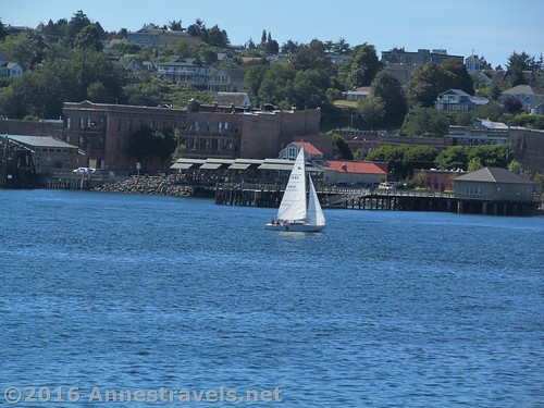 A sailboat in the quieter waters near Port Townsend as seen from the Port Townsend Ferry crossing the Puget Sound, Washington
