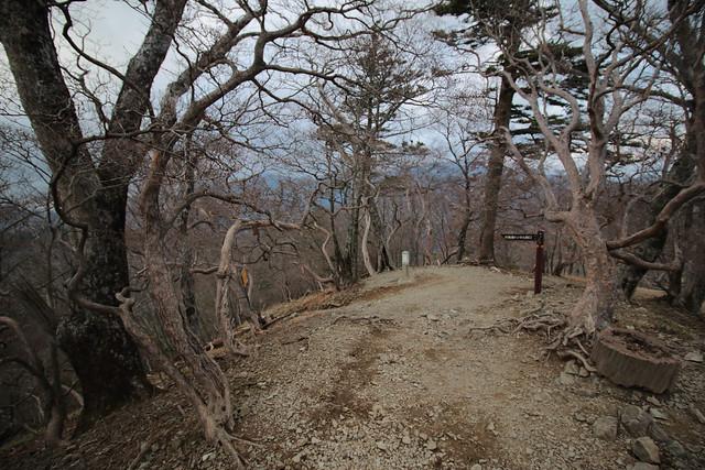20141123-大峰山-0419.jpg