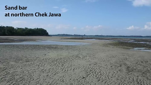 Sand bar at northern Chek Jawa