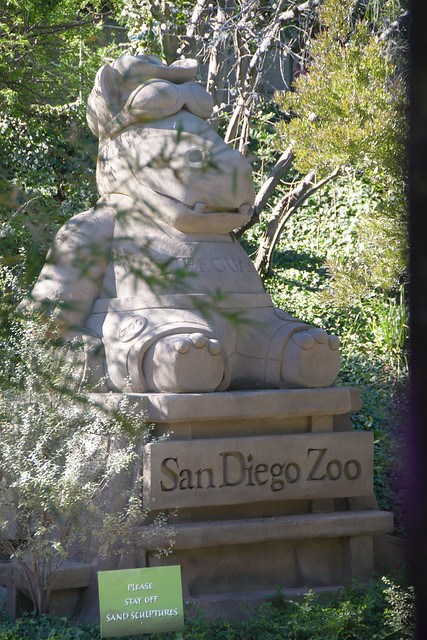 san diego zoo-111