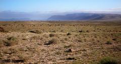 """""""El Jable"""" plains, Lanzarote"""