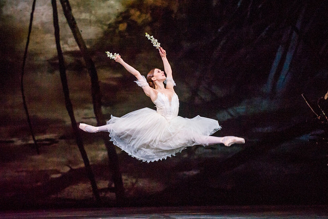 Marianela Nuñez in Giselle © ROH 2016. Photograph by Tristram Kenton