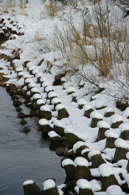 魚野川の冬景_201512_NO1