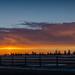 20160106-Sunrise. by DakotaLightPhotography