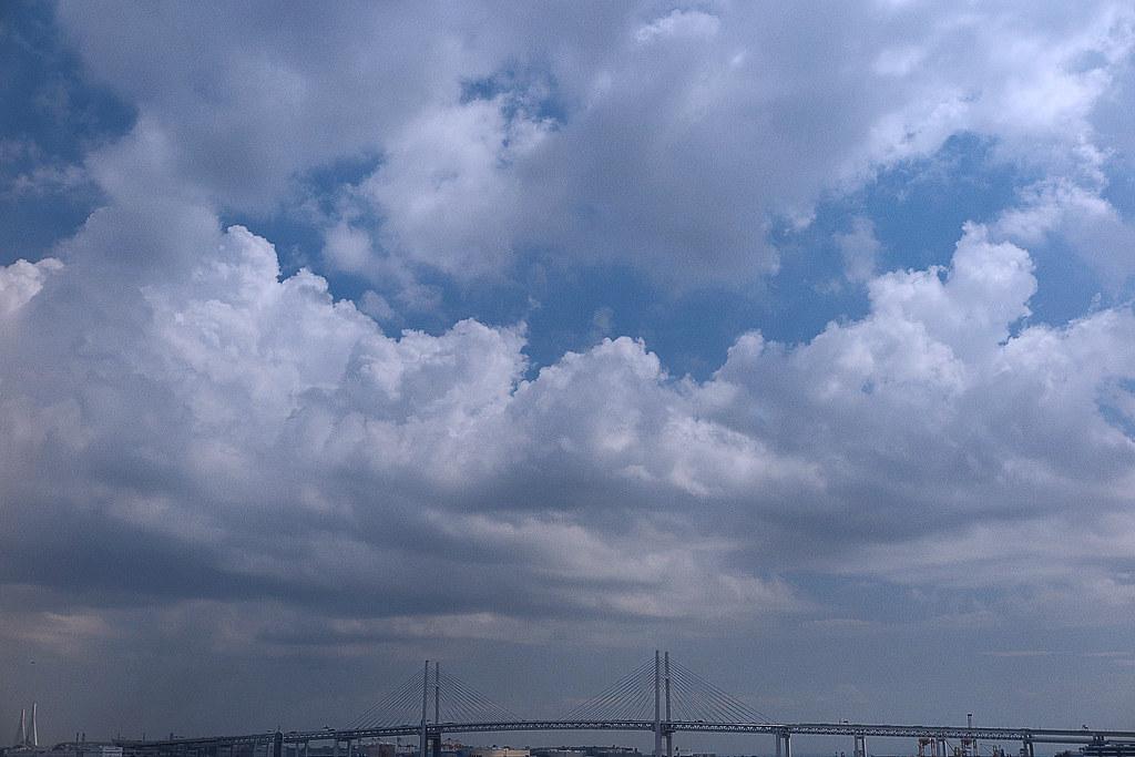 ヨコハマ散歩 大さん橋の写真