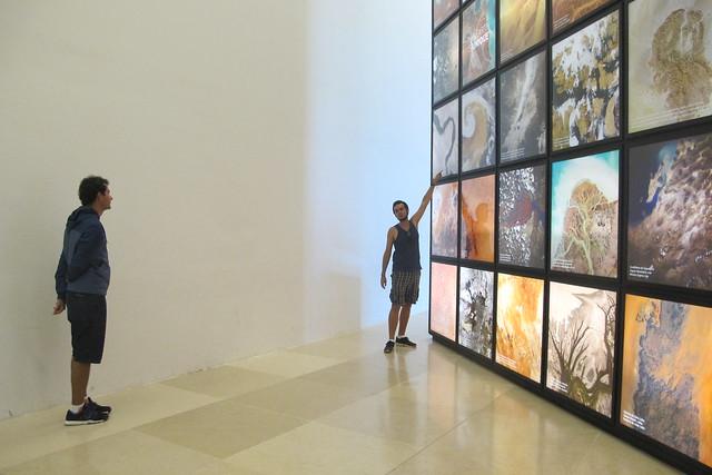 visita ao museu do amanhã