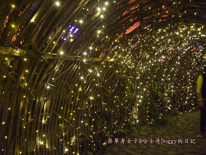 2013台北燈節在花博31