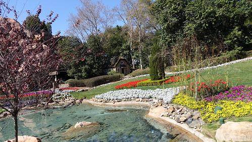 Epcot Flower and Garden Festival 2016 (173)