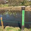 Photo:かえる池 By cyberwonk