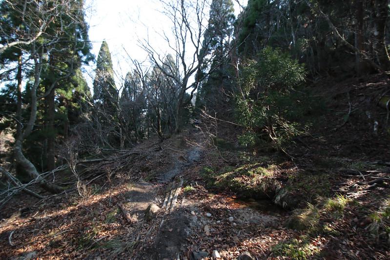 20141122-武奈ヶ岳&京都ライトアップ-0360.jpg