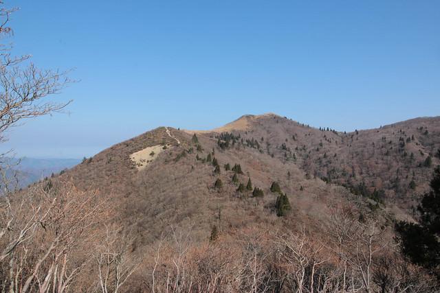 20141122-武奈ヶ岳&京都ライトアップ-0147.jpg