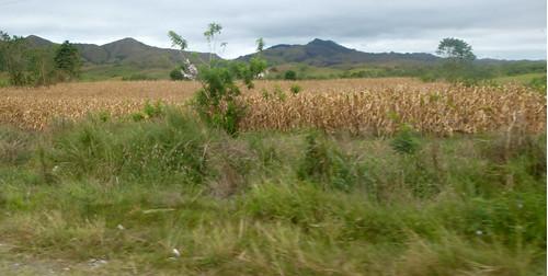 P16-Luzon-Tuguegarao-Tabuk-route (8)