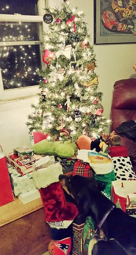 Doberman Puppy First Christmas Tree - Lapdog Creations