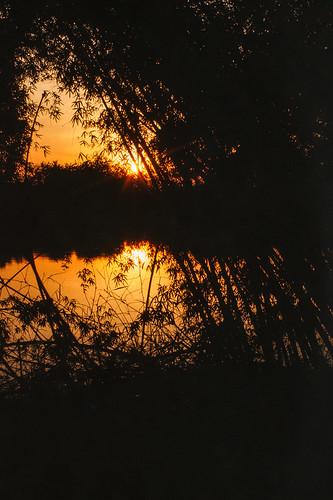 coucherleverdesoleil eau nature place river riviere sunrise sunset water