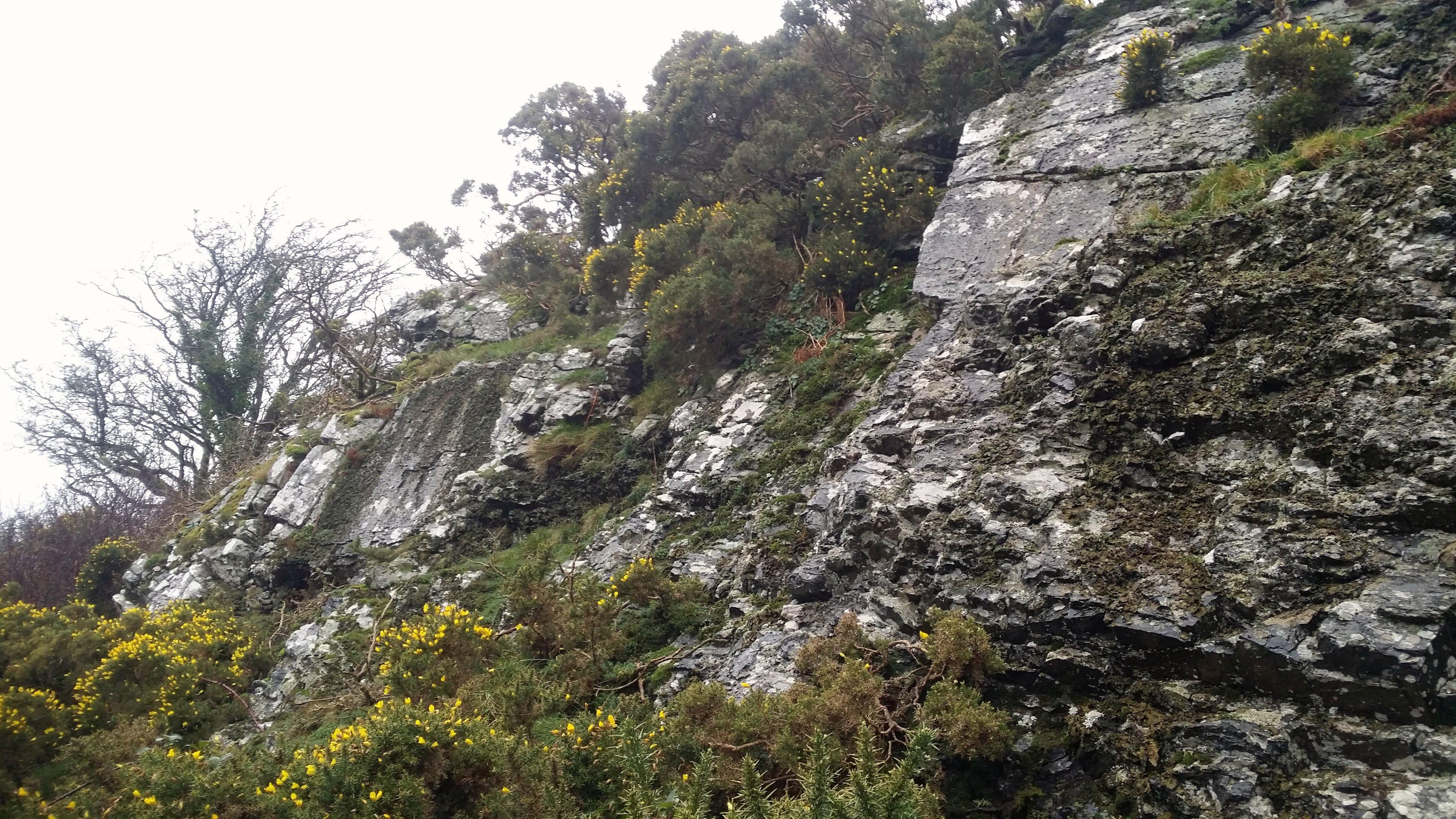 The Cliff #sh