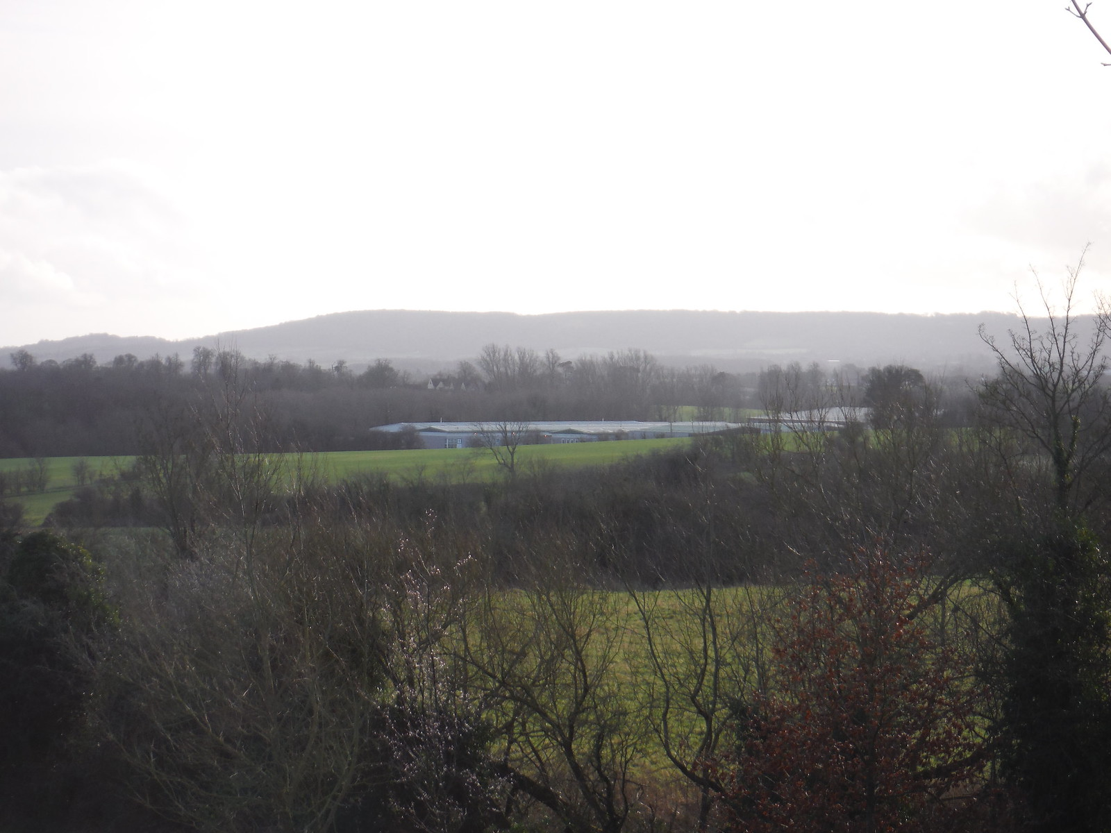 Chiltern Views, from Long Crendon SWC Walk 191 Haddenham Circular (via Brill)
