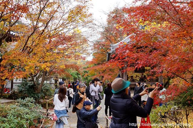 京都第四天095