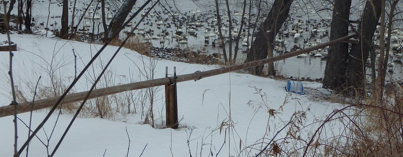 thin pipe above a snow-covered lawn
