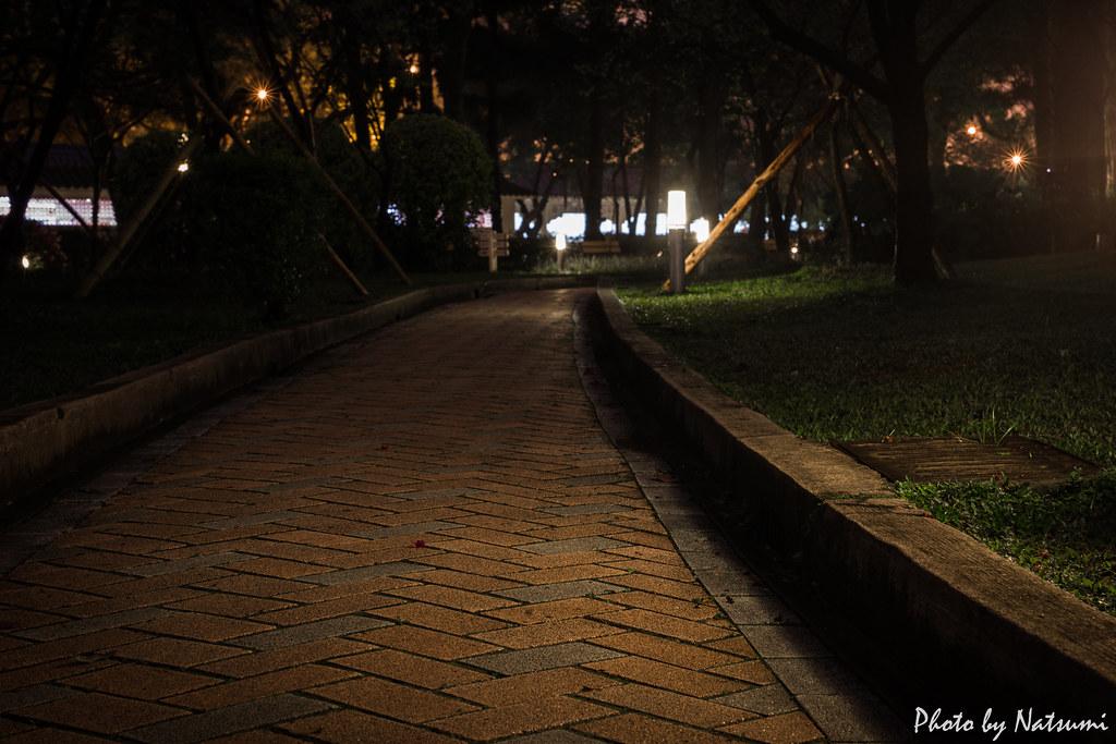 雨過後的街 - 中正紀念堂