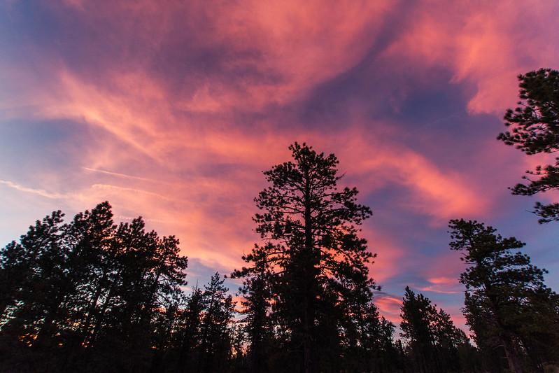 Bryce Canyon-51