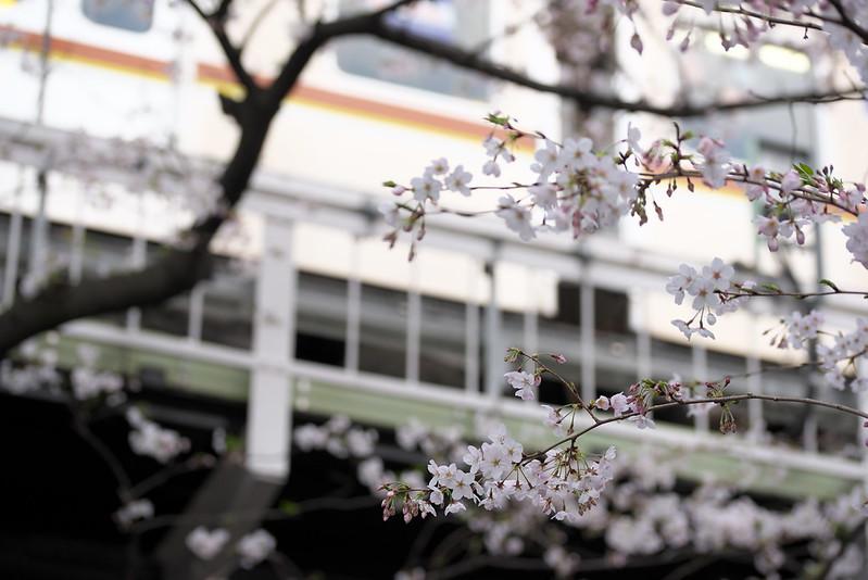 Tokyo Train Story 東急東横線 2016年3月31日