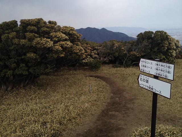 入道ヶ岳 登山道