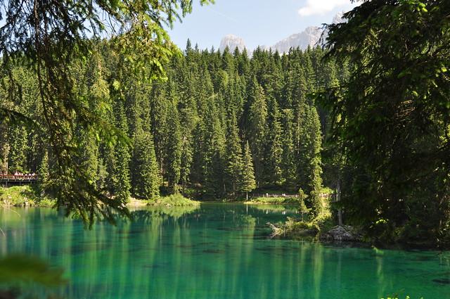 Transparences et reflets, Lago di Carezza (1534 m), Val d'Ega, Nova Levante, province de Bolzano, Trentin-Haut Adige, Italie.