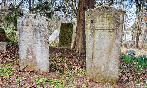bethelchapel bethelpresbyteriancemetery emelle sumtercounty alabama larrybell larebell larebel cemetery southernphotosoutlookcom