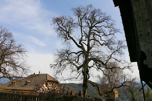 Oberbozen Soprabolzano Südtirol Alto Adige Blogger-Reise Booking Südtirol www.bookingsuedtirol.com