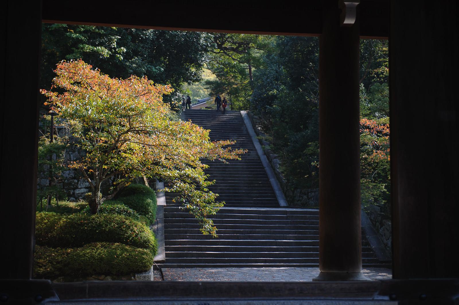 2015VQ@Kyoto-610