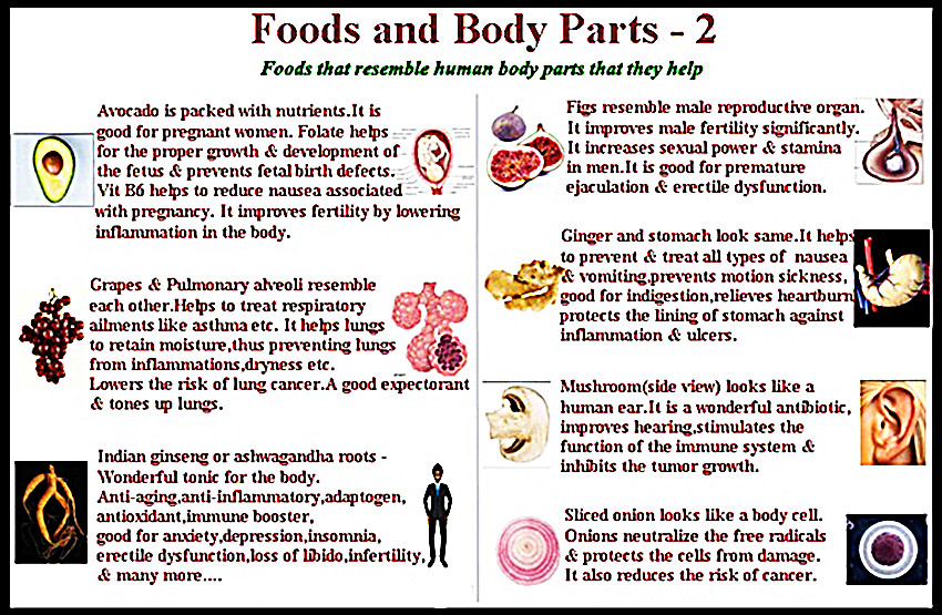 Daily Creative Foods Menu