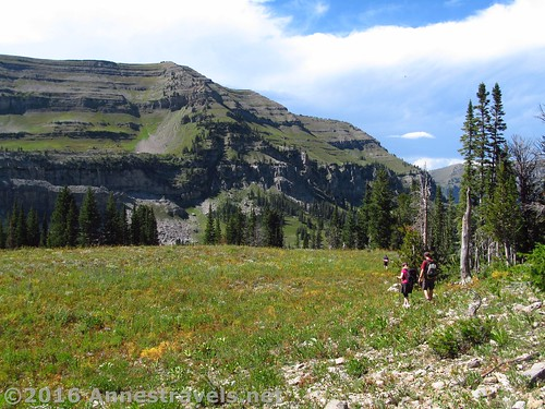 Starting the bushwack back toward the Stairway to Heaven Trail after visiting Alaska Basin Overlook, Jedediah Smith Wilderness and Grand Tetons National Park, Wyoming