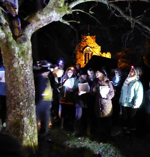 Wassail singers beneath the tree