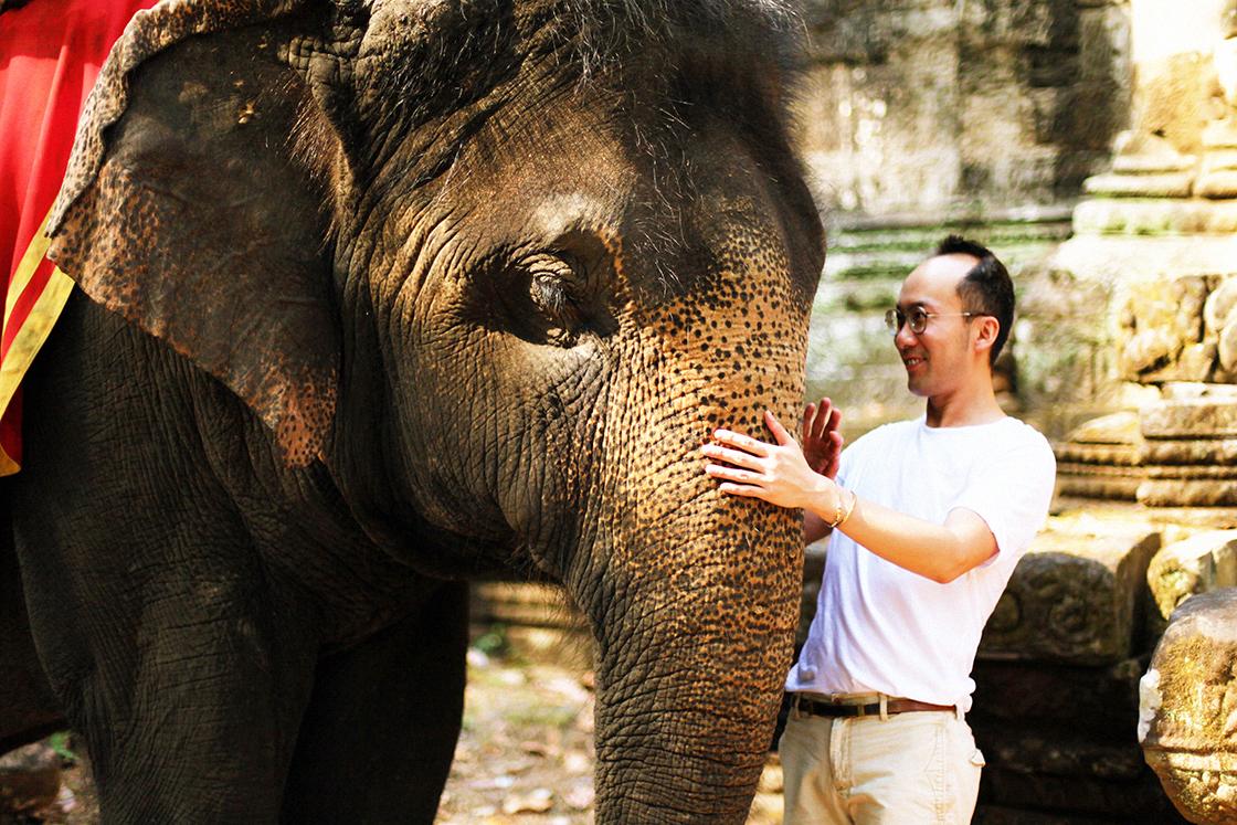 bye elephant 4