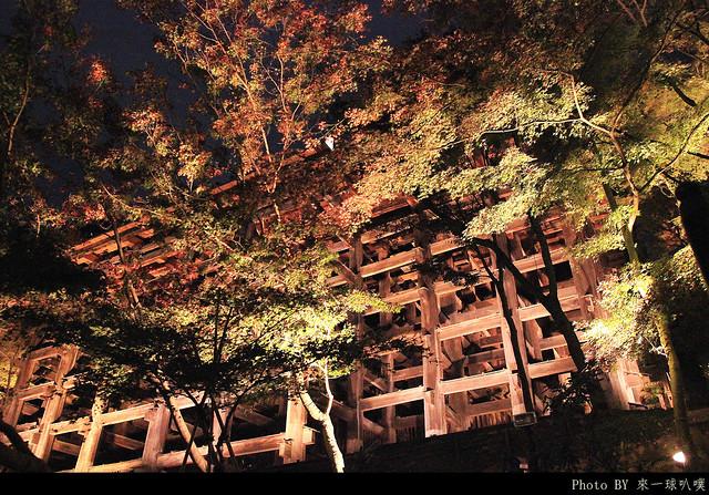 京都-清水寺135