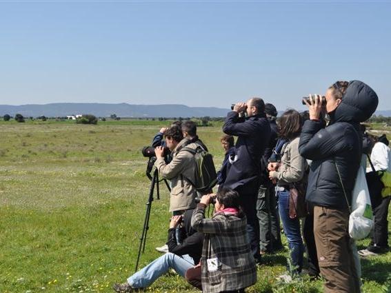 birdwatching_nel_Parco wwf