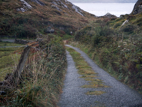 A drive along a narrow road on the Beara Peninsula in Ireland