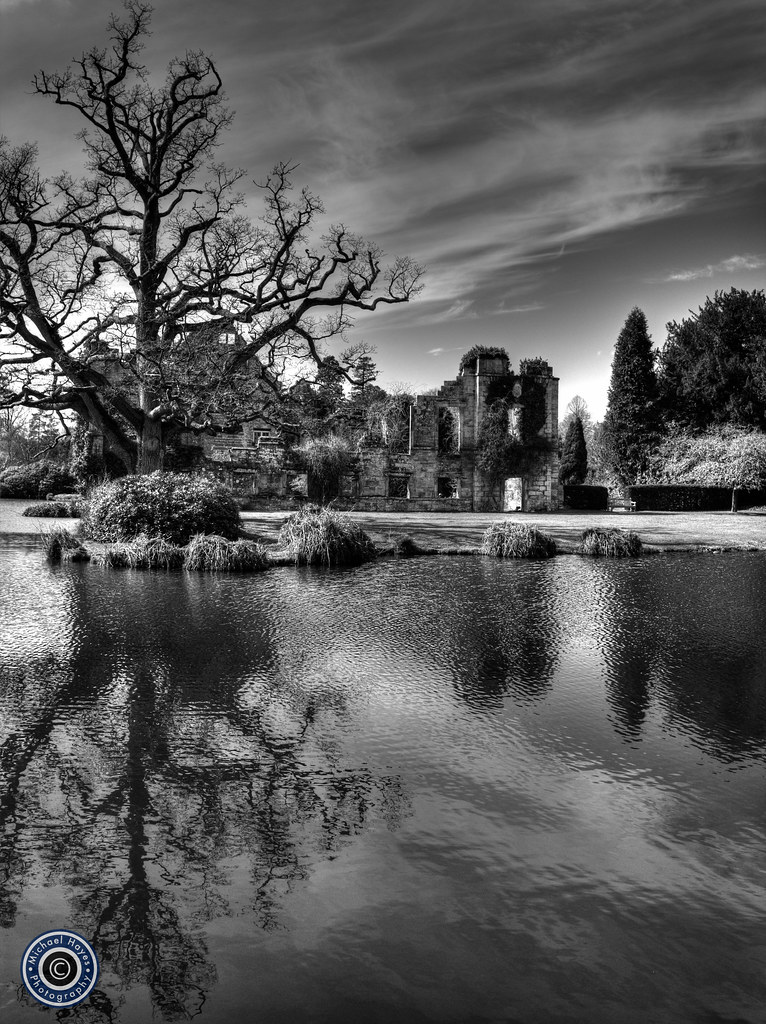 Tree reflection at Scotney Castle