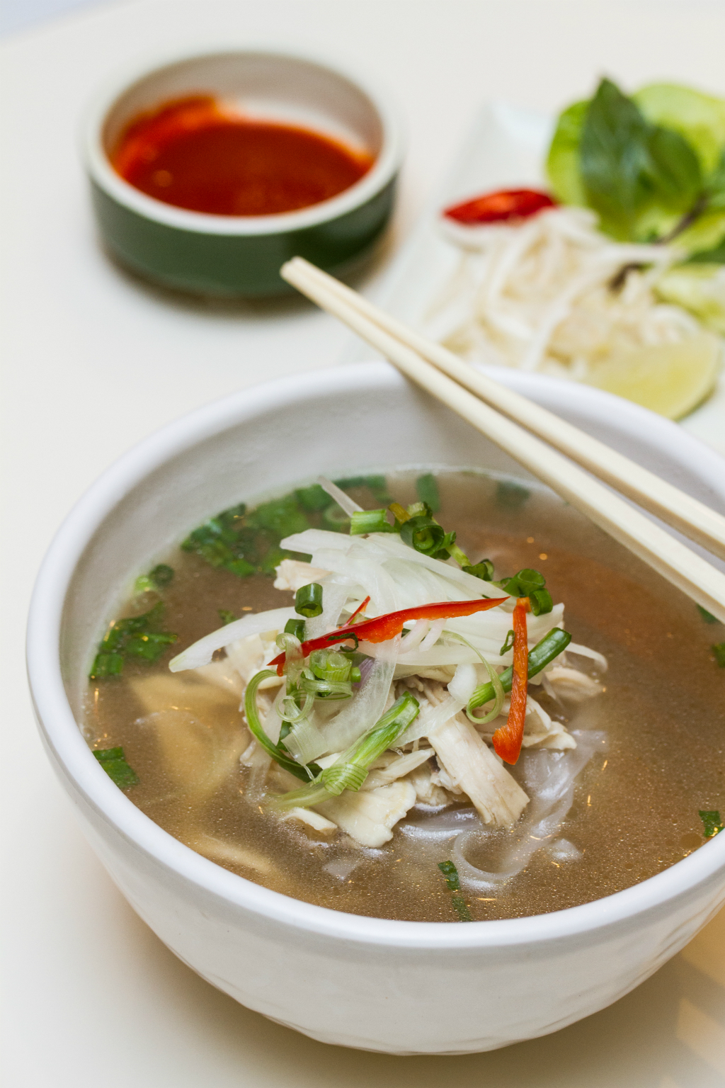 ION Food 1 for 1: Wrap & Roll chicken pho