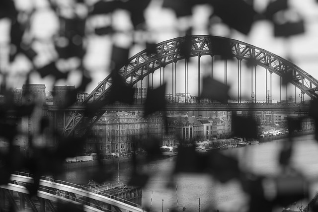 Newcastle Upon Tyne, 20 Mar 2016-00047