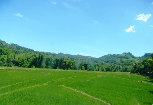 P16-Negros-Bacolod-San Carlos-route (41)