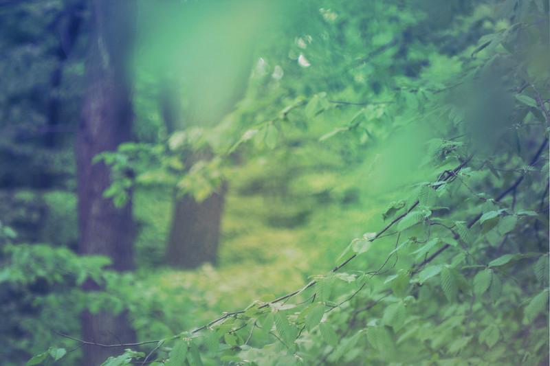 blur-dreamy-texture-texturepalace-68